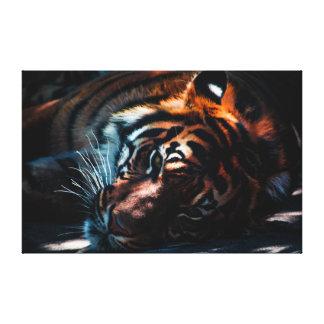 Tiger | Wild Cat | Predator Canvas Print