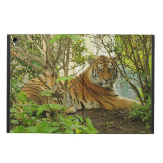 Tiger Wildlife Powis iPad Air Case