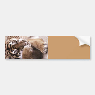 Tiger with a heart_ bumper sticker