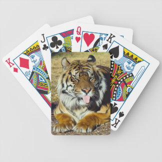 Tiger with a 'tude Playing cards