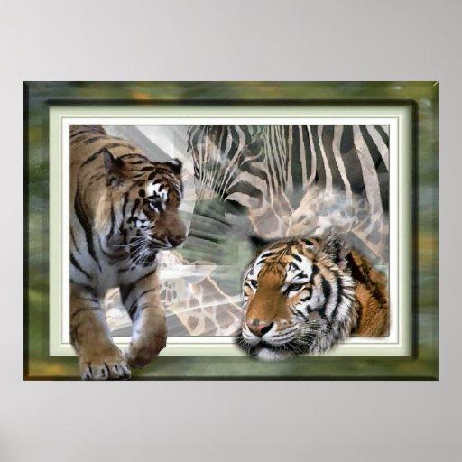 Tiger, Zebra, Giraffe, Lovers Gifts Poster