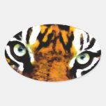TIGER'S EYE'S_