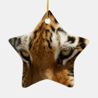 Tiger's Eyes Christmas Ornament