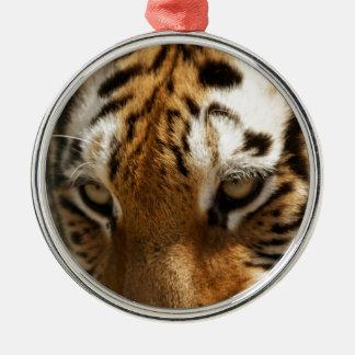 Tiger's Eyes Christmas Ornament