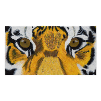 Tiger's Eyes Poster