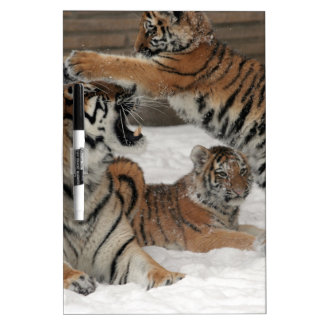 Tigers in snow dry erase board