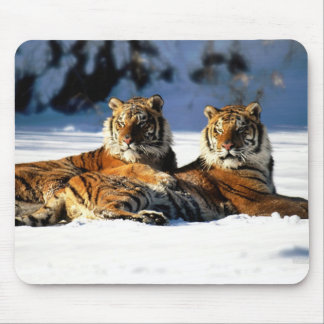 tigers in snow mouse mat