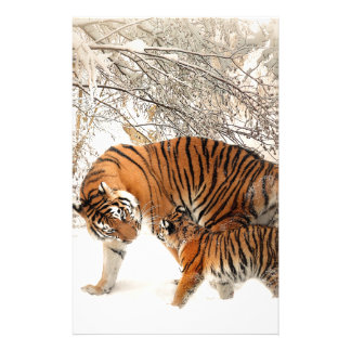 Tigers in the snow stationery