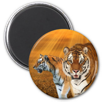 Tigers Magnet