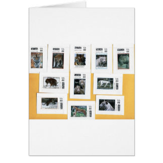 Tigers of all 4 colors greeting card