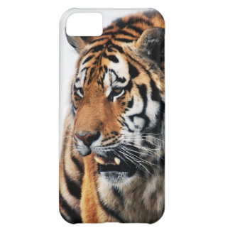 Tigers wild life cover for iPhone 5C