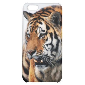 Tigers wild life iPhone 5C covers