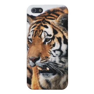 Tigers wild life cases for iPhone 5