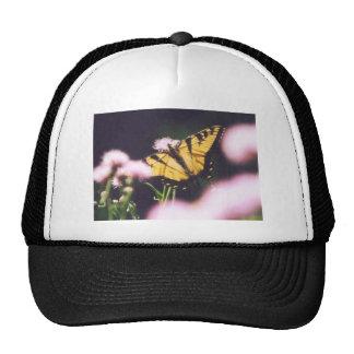 TigerSwallowtail Mesh Hat