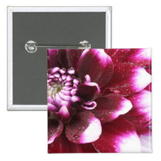 Tight in photographs of Dalhia flower with the 15 Cm Square Badge