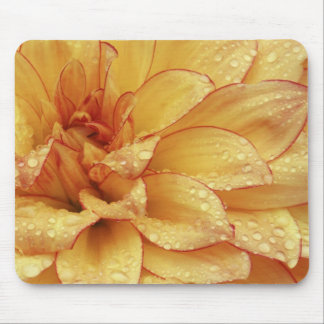 Tight in photographs of Dalhia flower with the 2 Mouse Mat
