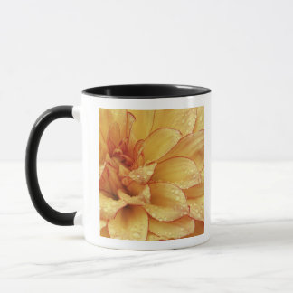 Tight in photographs of Dalhia flower with the 2 Mug