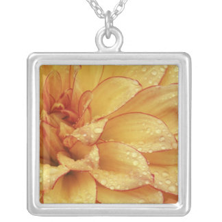 Tight in photographs of Dalhia flower with the 2 Silver Plated Necklace