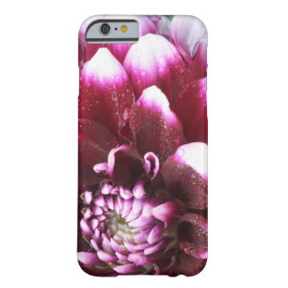Tight in photographs of Dalhia flower with the Barely There iPhone 6 Case