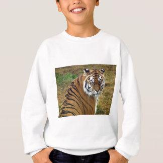 Tigress in the rain sweatshirt