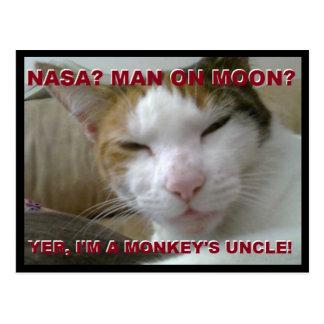Tiki Monkey Postcard - FLat Earth Meme