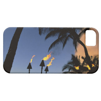 Tiki Torches Hawaii iPhone 5 Case