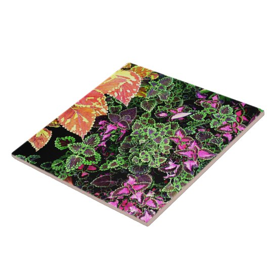 "TILE,""COLORFUL COLEUS"" DECORATIVE TILE"