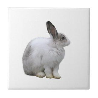 Tile of rabbit