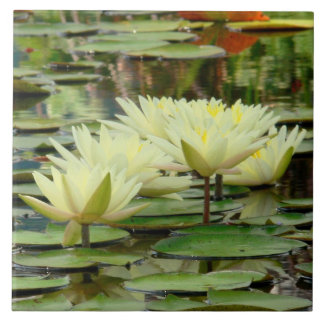 TILE/ YELLOW LOTUS BLOSSOMS IN LILY POND TILE