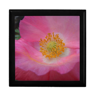 Tilted Sweet Pink Poppy Large Square Gift Box