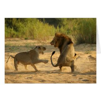Timbavati River, Kruger National Park, Limpopo Greeting Card