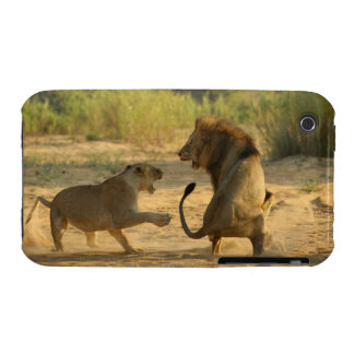 Timbavati River, Kruger National Park, Limpopo iPhone 3 Case-Mate Cases