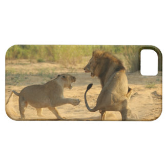 Timbavati River, Kruger National Park, Limpopo iPhone 5 Case