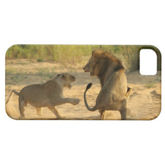 Timbavati River, Kruger National Park, Limpopo iPhone 5 Cover
