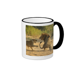 Timbavati River, Kruger National Park, Limpopo Ringer Mug