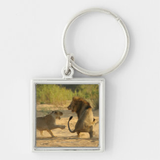 Timbavati River, Kruger National Park, Limpopo Silver-Colored Square Key Ring