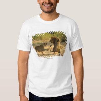 Timbavati River, Kruger National Park, Limpopo T Shirts