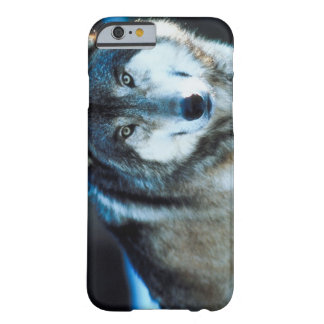 Timber wolf barely there iPhone 6 case