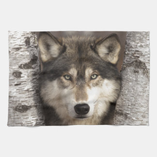 Timber wolf by Jim Zuckerman Tea Towel