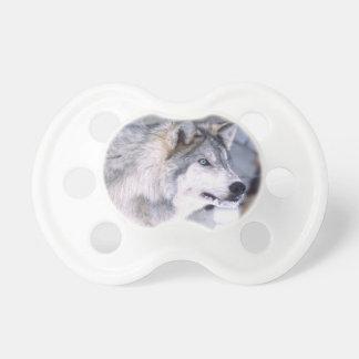 Timber Wolf, Canis lupus, Movie Animal Utah) Dummy