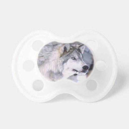 Timber Wolf, Canis lupus, Movie Animal Utah) Pacifier