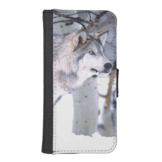 Timber Wolf, Canis lupus, Movie Animal Utah) iPhone SE/5/5s Wallet Case