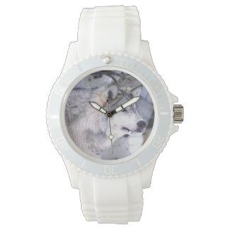 Timber Wolf, Canis lupus, Movie Animal Utah) Wrist Watches