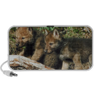 Timber wolf cubs travel speaker