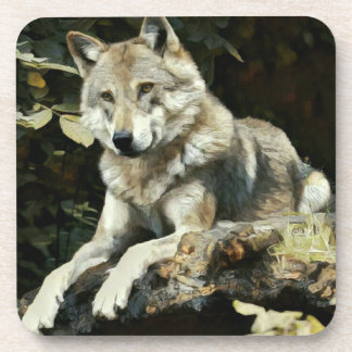 Timber Wolf Painting Coasters