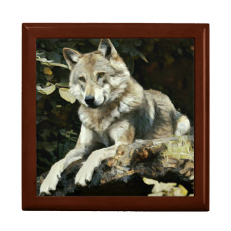 Timber Wolf Painting Gift Box