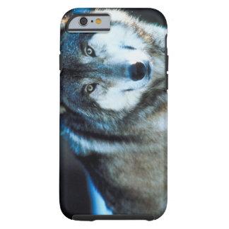 Timber Wolf Tough iPhone 6 Case