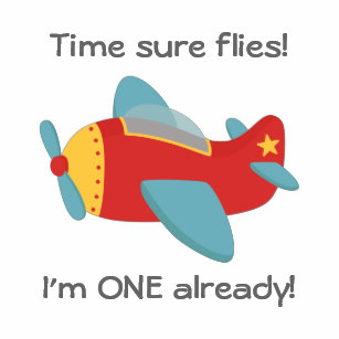 Time Flies Cute Aeroplane Im One 1st Birthday Baby T