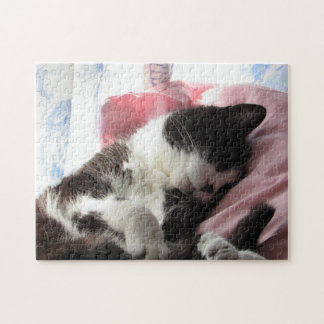 Time for a Cat Nap Puzzle