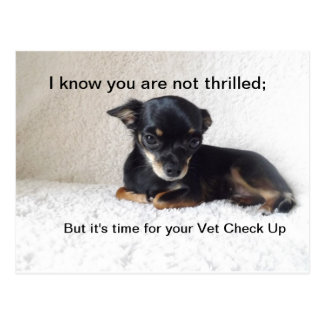 Time for Vet check up Postcard